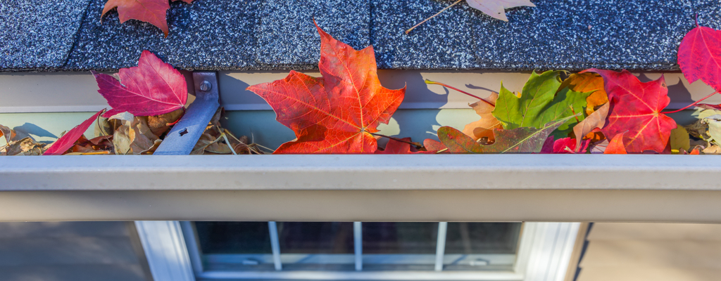 Preparing for Fall with Your Smart Home