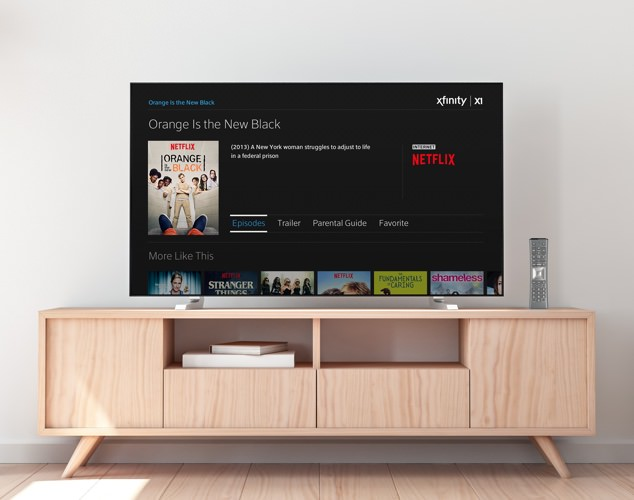 Netflix displayed on TV