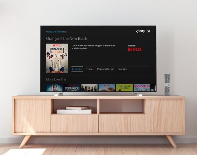 SALP Netflix