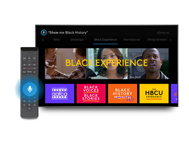 TV and Voice Remote Black Experience