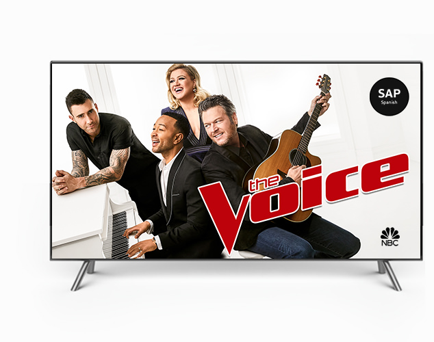 The Voice on TV screen