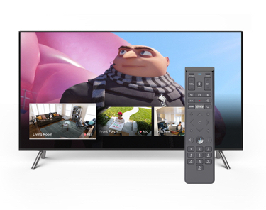 tv and voice remote