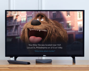 TV con imagen de perro