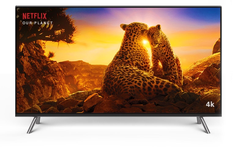 Television displaying two cheetahs on Netflix